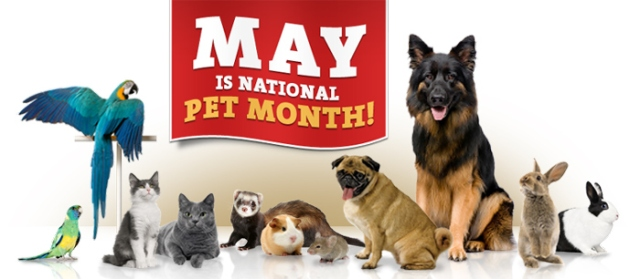 may-national-pet-month